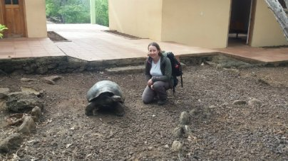 giant-tortoise-600