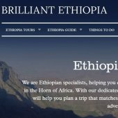 brilliant-ethiopia-logo